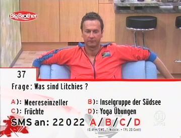 Was sind Litchies?