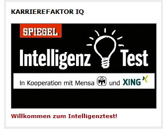 Intelligenz Test